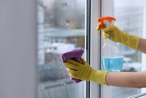 Can Regular Cleaning Remove Bacteria & Germs in My Home?